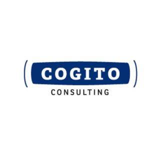 Logo und Design Cogito Consulting